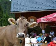 Bauernhof Simma Reinelde