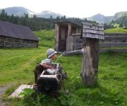 Bauernhof Almland-Hütte & Bergland-Hütte