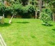Villa Berghinz