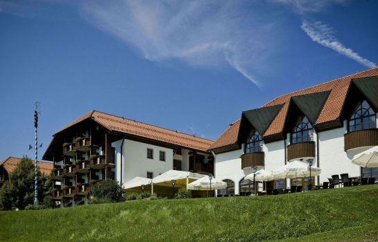 Michel & Friends Hotel