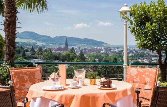 Mercure Hotel Panorama Freiburg-Freiburg im Breisgau-Hotel-Bar