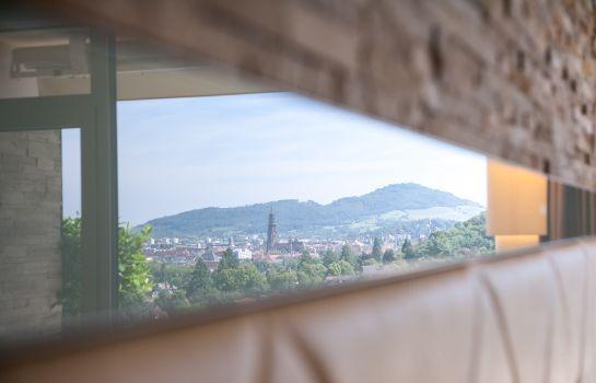 Mercure Hotel Panorama Freiburg-Freiburg im Breisgau-Room with balcony