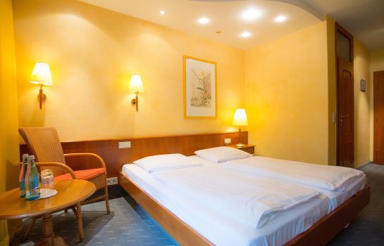 Ringhotel Zum Roten Baeren-Freiburg im Breisgau-Double room standard