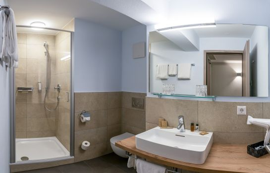 Hotel Rappen Muensterplatz-Freiburg im Breisgau-Bathroom