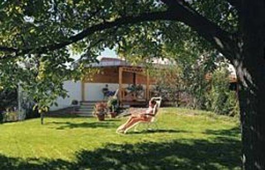 Zum Schiff-Freiburg im Breisgau-Garden