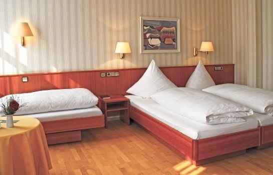 Zum Schiff-Freiburg im Breisgau-Triple room