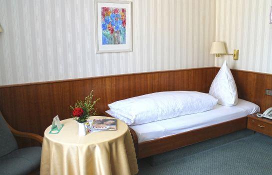 Zum Schiff-Freiburg im Breisgau-Single room standard