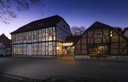 Centro Hotel Alter Wolf