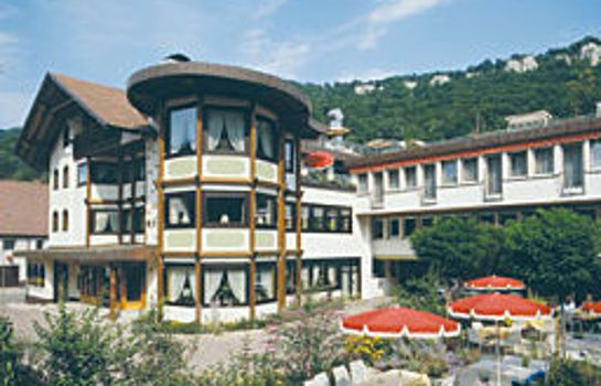 Adler mit Gästehaus Herzog Ulrich