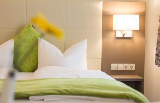City Hotel-Freiburg im Breisgau-Doppelzimmer Komfort