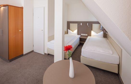 City Hotel-Freiburg im Breisgau-ecoDouble