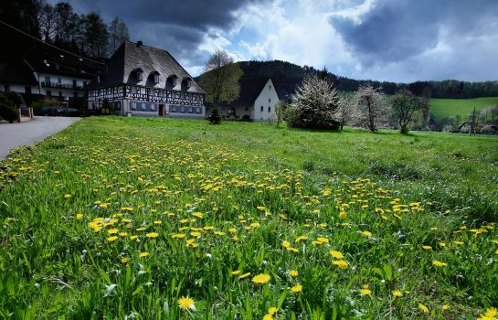 Zum Kreuz Landhotel-Glottertal - Glotterbad-Umgebung