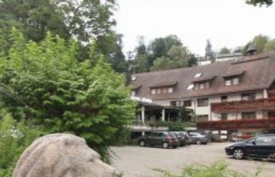 Schwaers Loewen-Freiburg im Breisgau-Exterior view