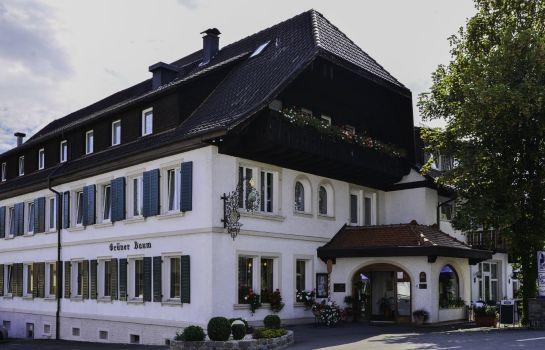 Grüner Baum Flair Hotel