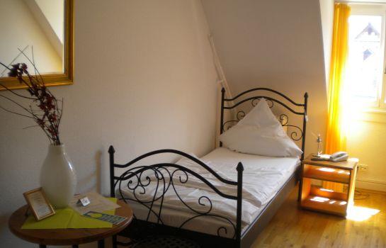 Schuetzen Gasthaus-Freiburg im Breisgau-Single room standard