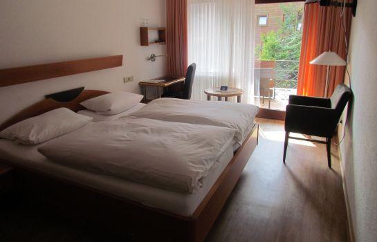 Zum Kreuz Gasthof-Freiburg im Breisgau-Doppelzimmer Komfort