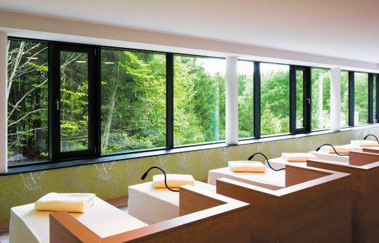 Naturresort_Schindelbruch-Suedharz-Ruhebereich-3-35031 Interior