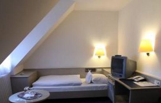 Hirschengarten-Freiburg im Breisgau-Room