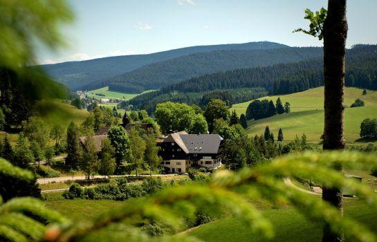 Tannzapfenland