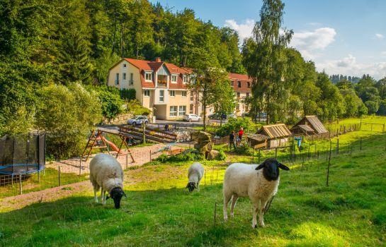 Zella-Mehlis: Waldmühle