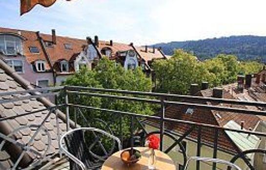 Schiller-Freiburg im Breisgau-Ausblick