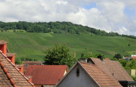 Zum Ochsen-Schallstadt-Ausblick