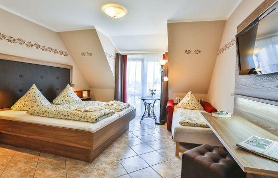 Zum Ochsen-Schallstadt-Triple room