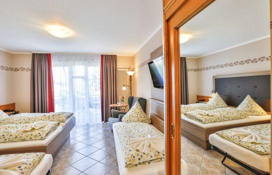 Zum Ochsen-Schallstadt-Four-bed room