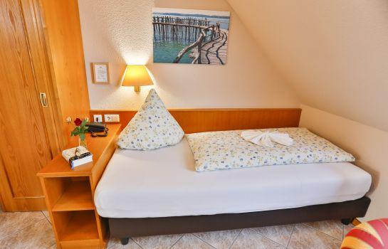 Zum Ochsen-Schallstadt-Single room standard
