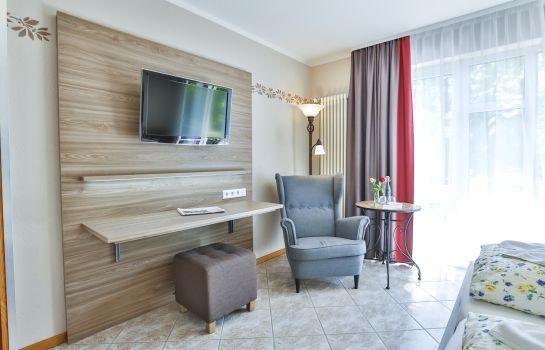 Zum Ochsen-Schallstadt-Double room standard