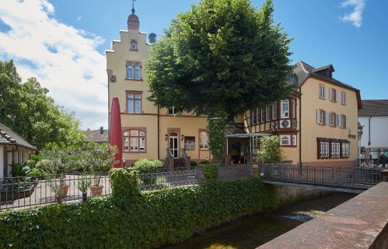 "Badischer Hof Hotel & Restaurant ""Heimat"""