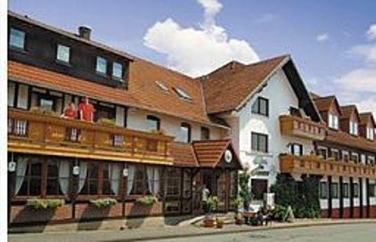 Zur Igelstadt
