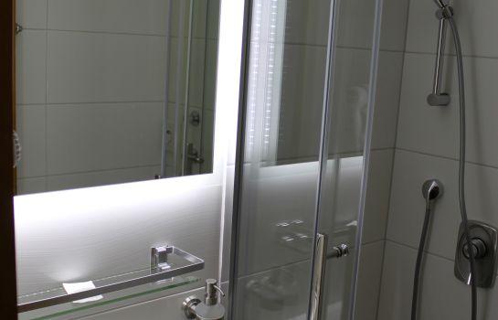Hochdorfer Hirschen-Freiburg im Breisgau-Bathroom