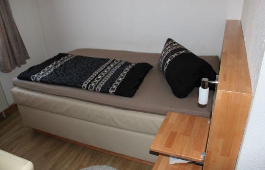 Hochdorfer Hirschen-Freiburg im Breisgau-Single room standard
