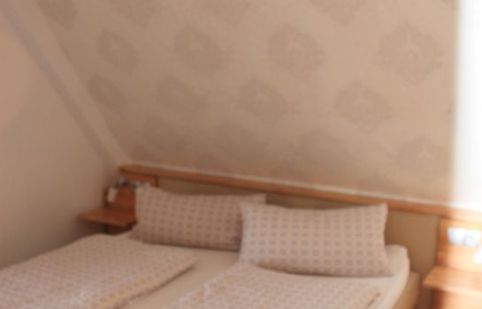 Hochdorfer Hirschen-Freiburg im Breisgau-Double room standard