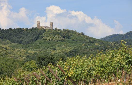 Chateau dAndlau-Barr-Surroundings