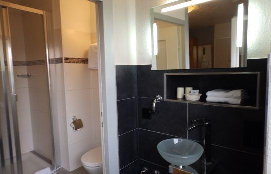 H41-Inn Freiburg-Gundelfingen-Bathroom