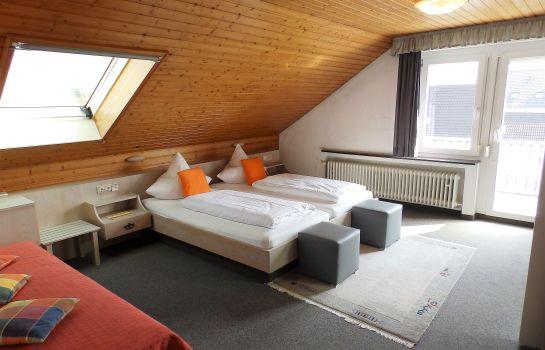 H41-Inn Freiburg-Gundelfingen-Double room standard