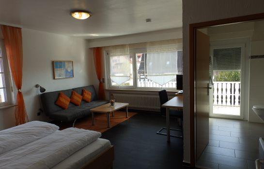 H41-Inn Freiburg-Gundelfingen-Double room superior