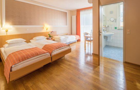 Classic-Freiburg im Breisgau-Triple room