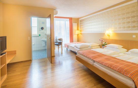 Classic-Freiburg im Breisgau-Four-bed room