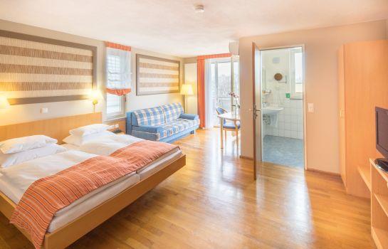 Classic-Freiburg im Breisgau-Double room standard