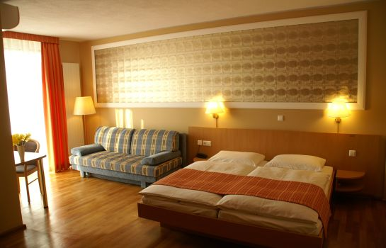 Classic-Freiburg im Breisgau-Double room superior