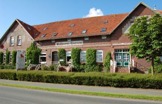 Friesland Stern