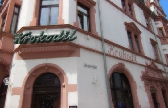 Heidelberg: Krokodil