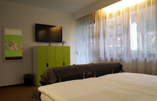 Ruh Gaestehaus-Freiburg im Breisgau-Room with terrace