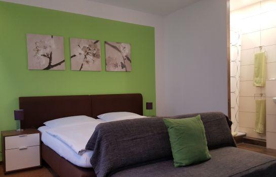 Ruh Gaestehaus-Freiburg im Breisgau-Zimmer mit Terrasse