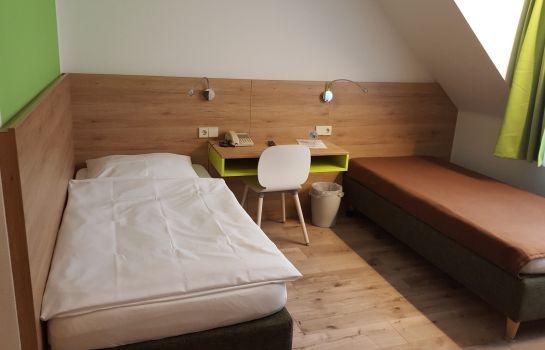 Ruh Gaestehaus-Freiburg im Breisgau-Single room standard