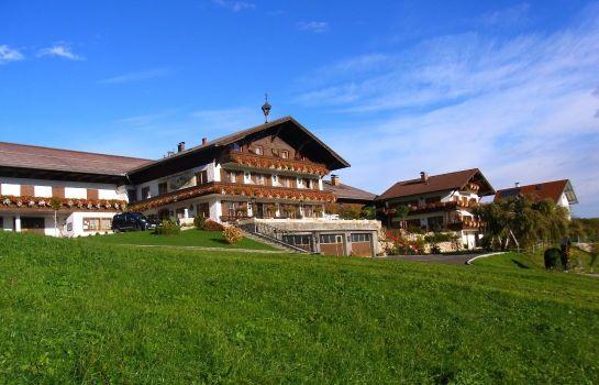 Bauernhof Stiedlbauerhof