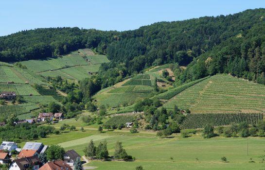 Schwarzenbergs Traube-Glottertal - Glotterbad-Umgebung